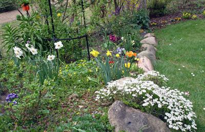 Frühling 2007 Brode 9 007