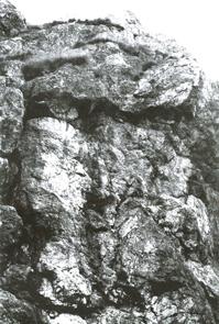 Zwiegesicht Feldstein aus: Neumann-Gundrum, Großskulpturen